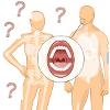 Menselijk lichaam quiz