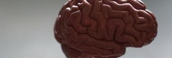 Hoogleraar neuropsychologie: houd je hersenen fit!